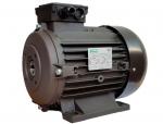 Мотор RAVEL H160 S HP 20 4P MA AC KW 15 4P