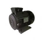 Мотор Ravel H100 HP 6.1 4P MA AC Kw4,4 4P