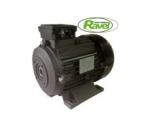 Электродвигатель для АВД Ravel 5,5 kW
