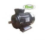 Электродвигатель для АВД Ravel 5,5 kW Внешний Вал